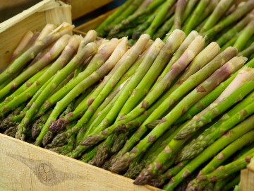 Scaling and Asparagus