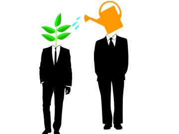 Picking Mentors